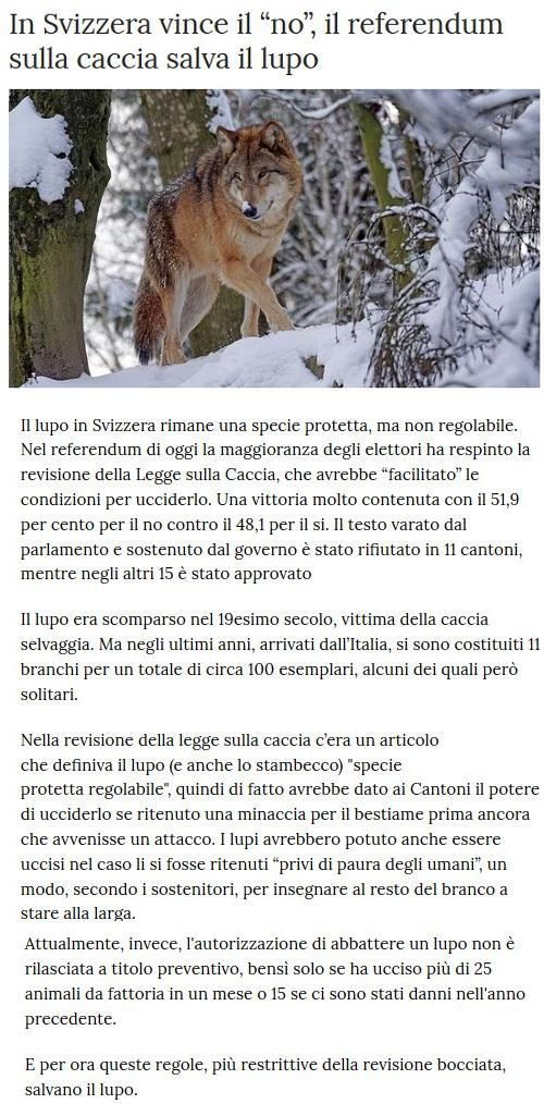 Notizie di animali....nel mondo - Pagina 7 Lupo10