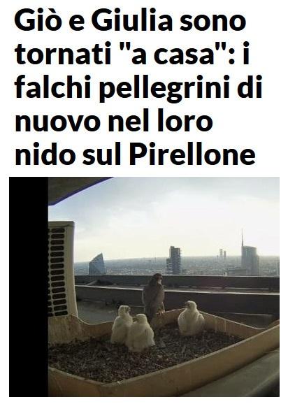 MILANO e dintorni..... - Pagina 4 Milano44