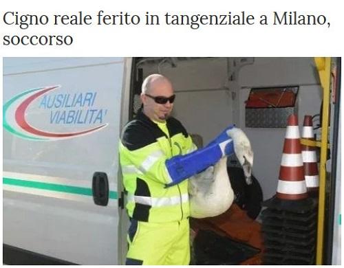 MILANO e dintorni..... - Pagina 4 Milano46