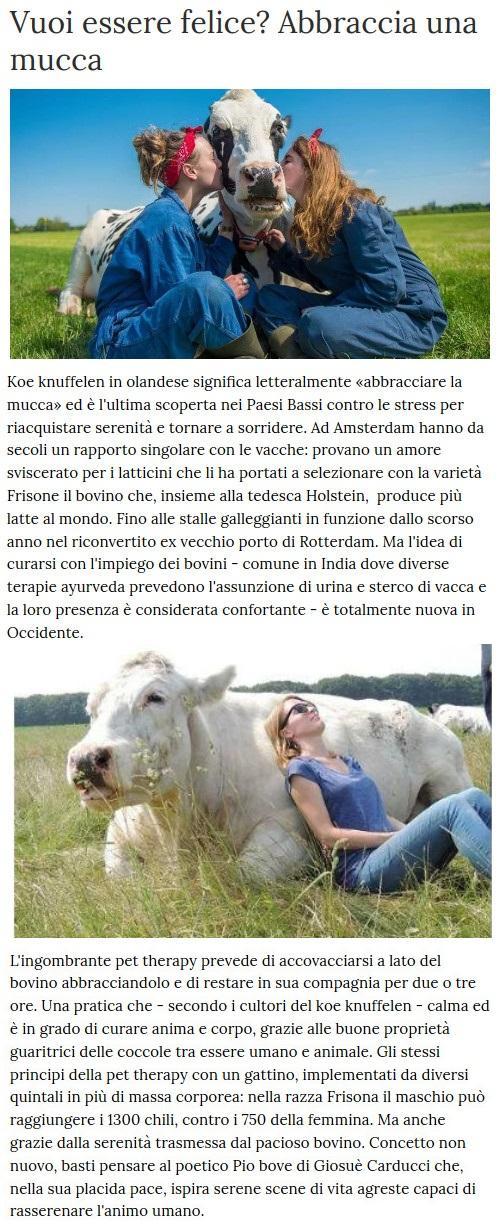 Notizie di animali....nel mondo - Pagina 7 Mucca10