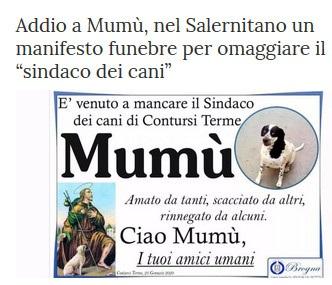 Notizie di animali....nel mondo - Pagina 2 Mumu10