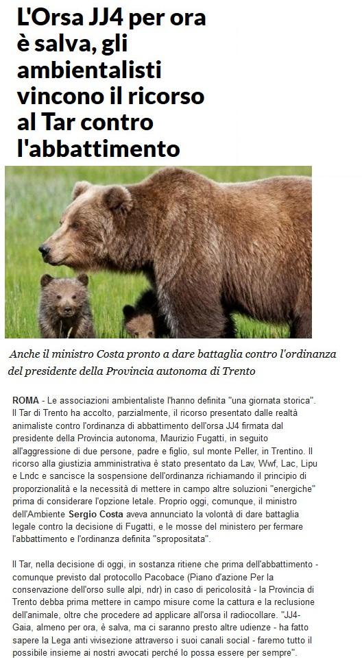Notizie di animali....nel mondo - Pagina 5 Orsa11