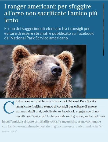 Notizie di animali....nel mondo - Pagina 5 Orso11