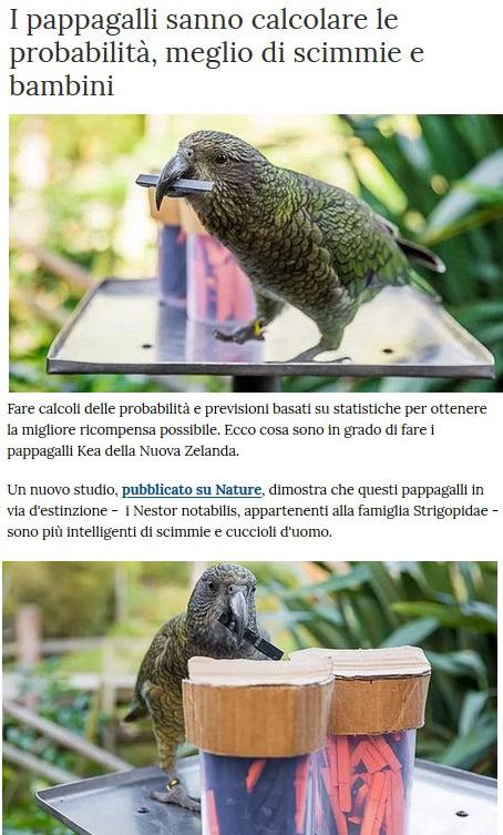 Animali... strani - Pagina 18 Pappag12