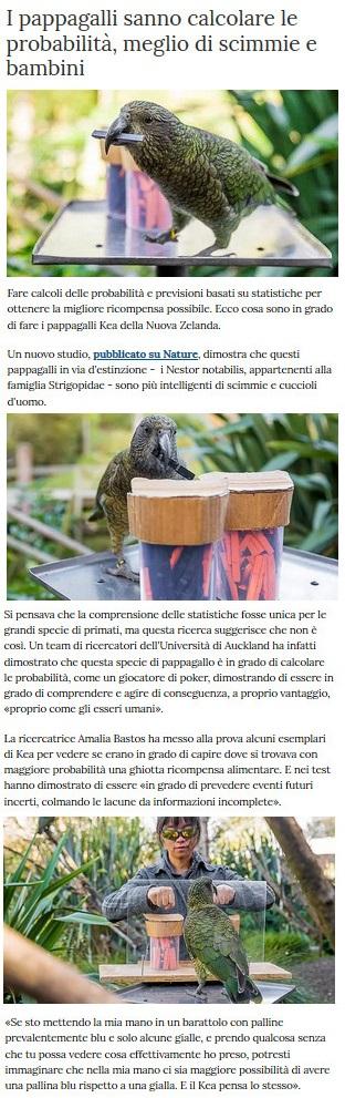 Notizie di animali....nel mondo - Pagina 4 Pappag13