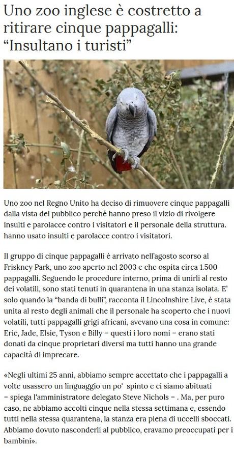 Notizie di animali....nel mondo - Pagina 7 Pappag15