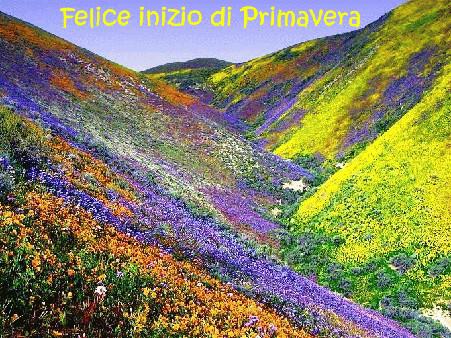 E' primavera Primav10