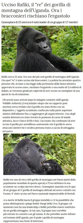 Notizie di animali....nel mondo - Pagina 3 Rafiki10