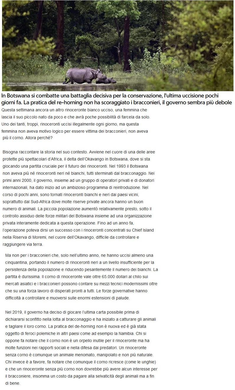 Notizie di animali....nel mondo - Pagina 4 Rinoce10