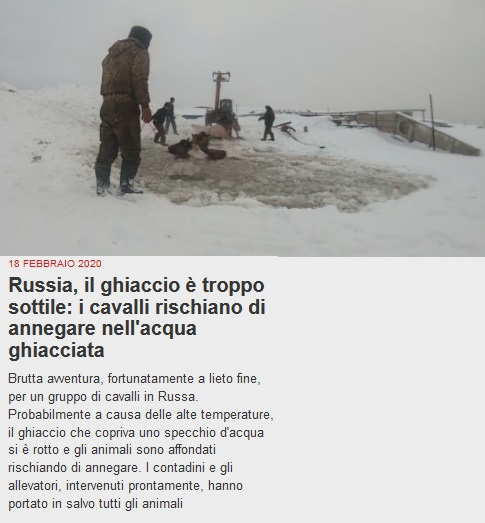 The Other news - Pagina 3 Russia10