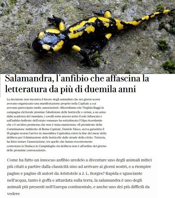 Notizie di animali....nel mondo - Pagina 4 Salama11