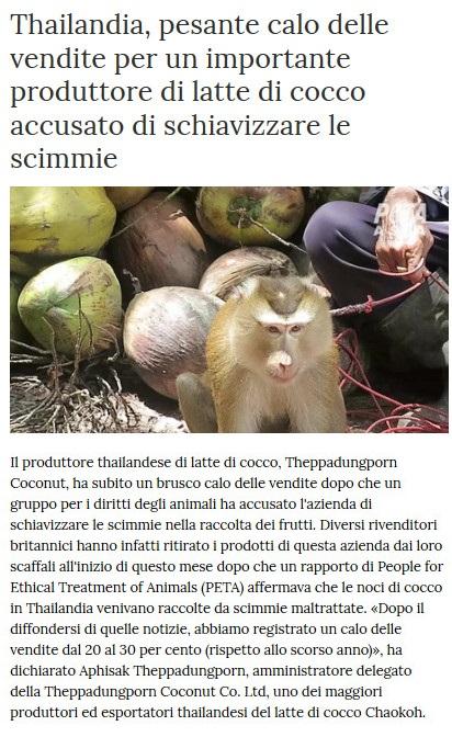 Notizie di animali....nel mondo - Pagina 5 Scimmi11