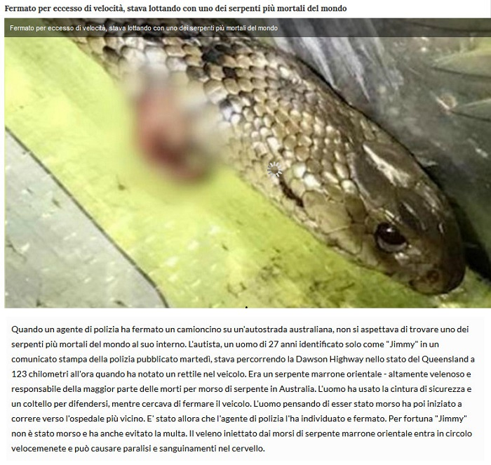 Notizie di animali....nel mondo - Pagina 4 Serpen11
