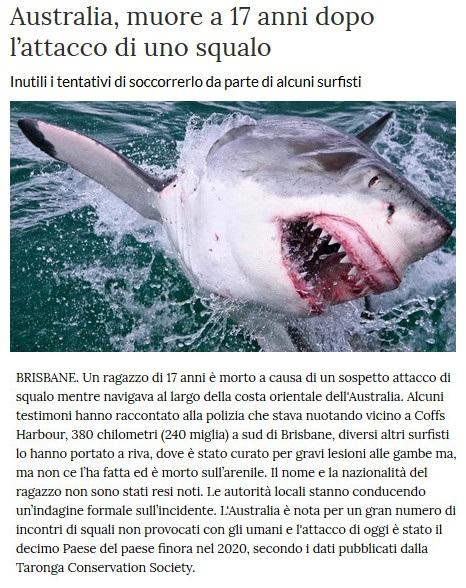 Notizie di animali....nel mondo - Pagina 4 Squalo11