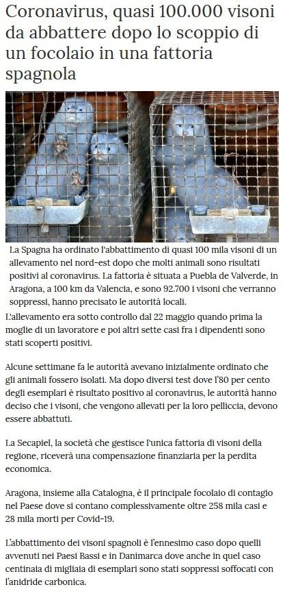 Notizie di animali....nel mondo - Pagina 5 Visoni10