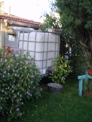 récupérateur d'eau de pluie Imgp3414