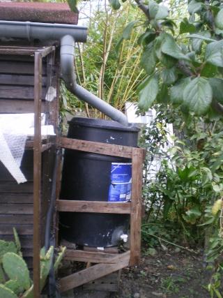 récupérateur d'eau de pluie Imgp3823