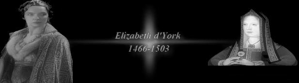 Reines et dames oubliées du passé (essai) Elizab10