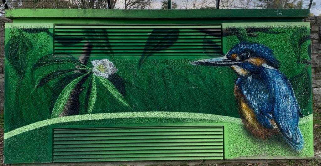 Anti Graffiti für Zweckgebäude - Seite 5 Img-2066
