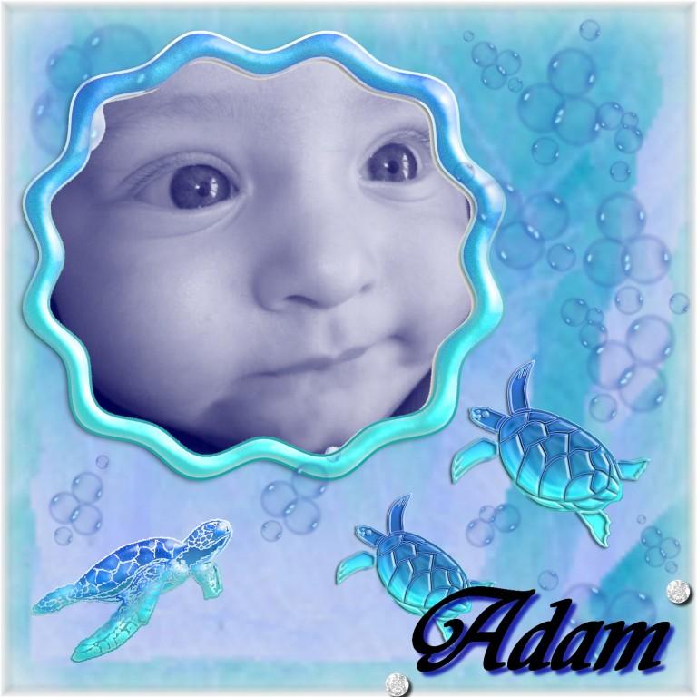 """Montages Adam et Ugo pour le consours """"Je mange"""" Adam_m11"""