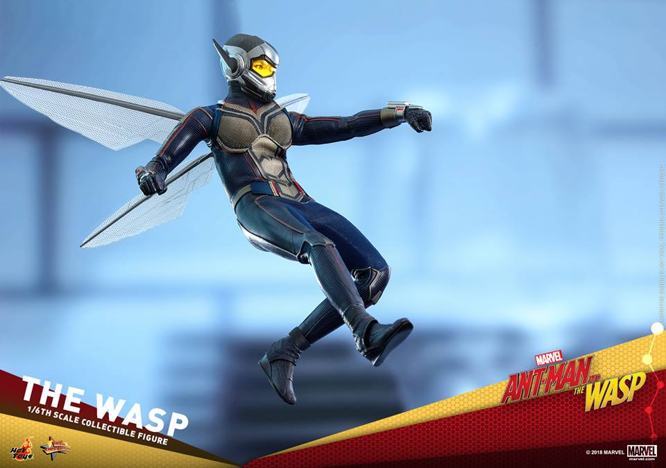 MMS??: ANT-MAN & THE WASP - THE WASP 36316810