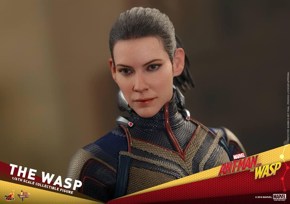 MMS??: ANT-MAN & THE WASP - THE WASP 36362610