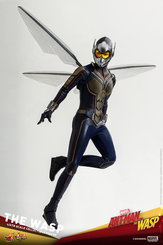 MMS??: ANT-MAN & THE WASP - THE WASP 36375511