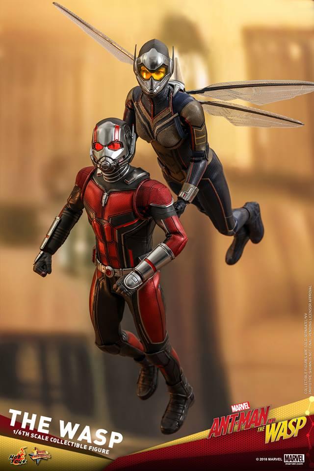 MMS??: ANT-MAN & THE WASP - THE WASP 36379710