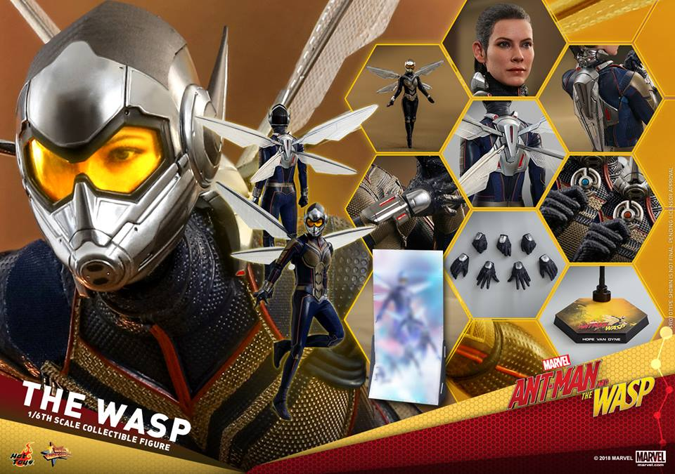 MMS??: ANT-MAN & THE WASP - THE WASP 36396811