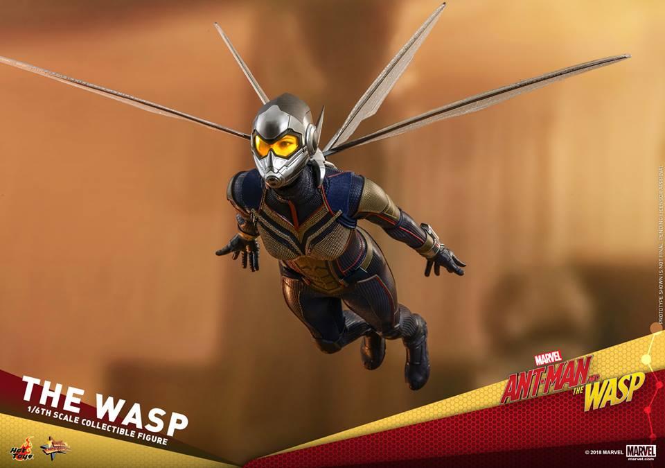 MMS??: ANT-MAN & THE WASP - THE WASP 36439010