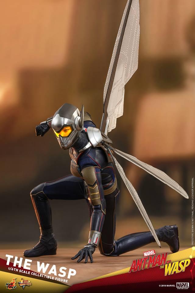 MMS??: ANT-MAN & THE WASP - THE WASP 36440710