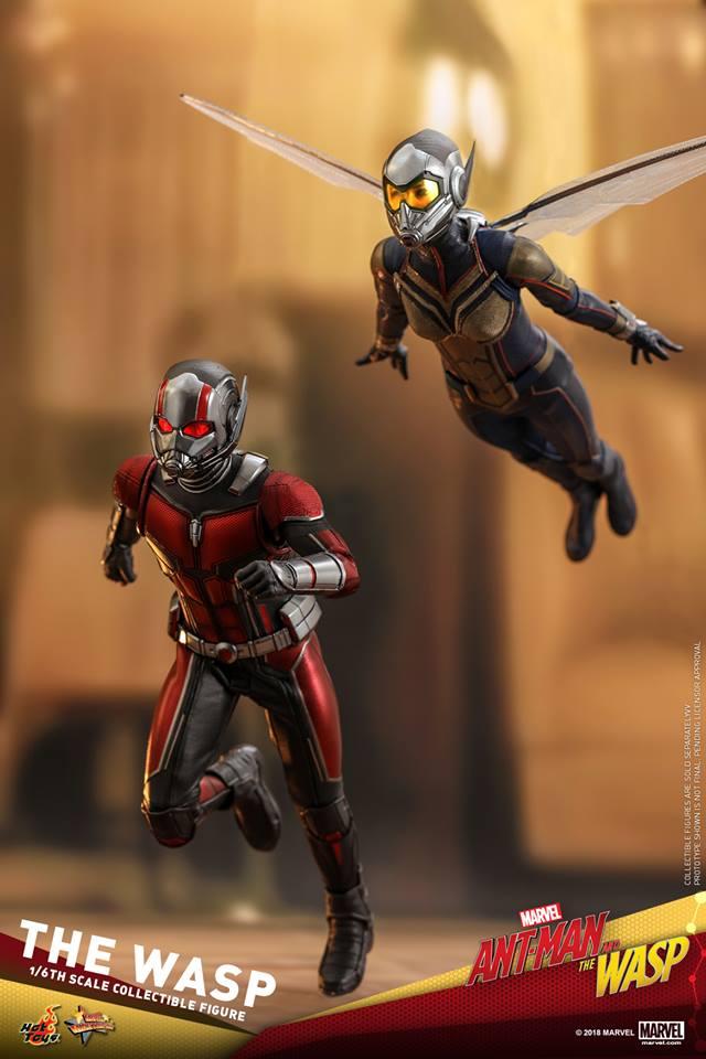 MMS??: ANT-MAN & THE WASP - THE WASP 36445810