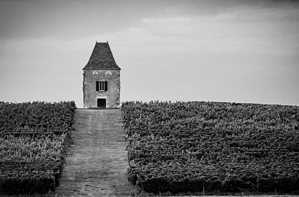 La tour des vignes. D72_3514