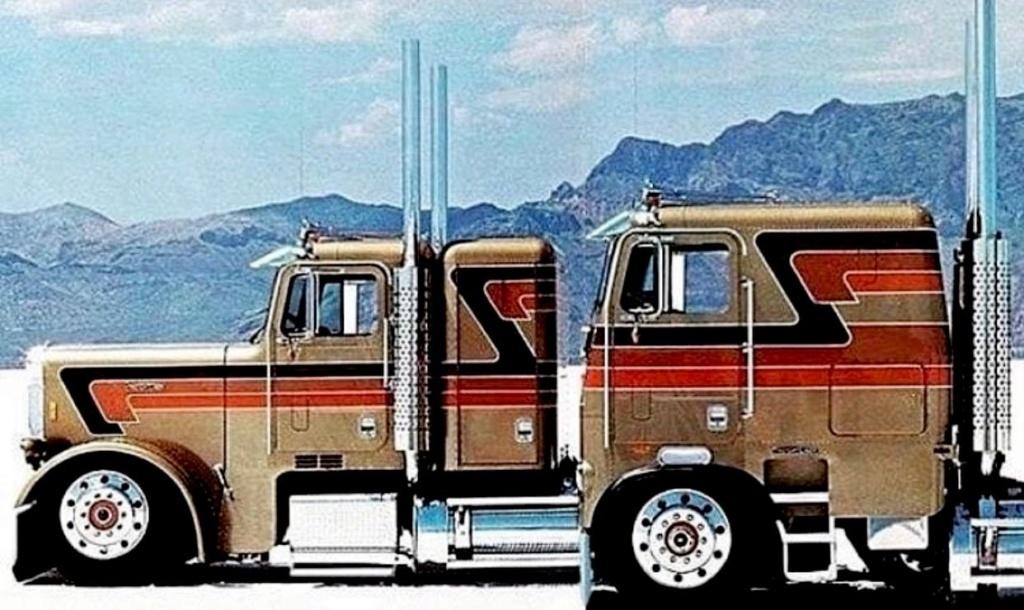 White freightliner custom!!!  Truck10