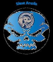 Listes des armées terrestres 3zome10