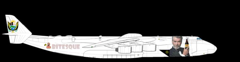 Avion pour Monsieur le Président Duvalon Antono12