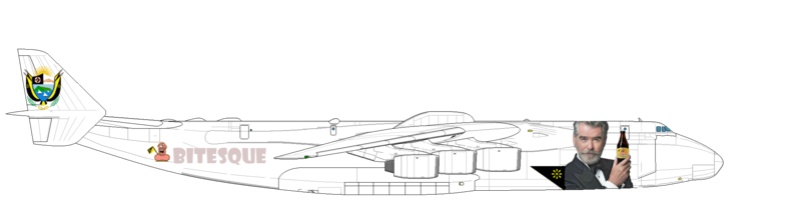 Avion pour Monsieur le Président Duvalon Antono19