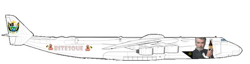 Avion pour Monsieur le Président Duvalon Antono20