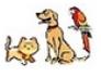 """<FONT COLOR=""""#495CFF""""><U>Les animaux domestiques et le passage de la douane</U></FONT>"""