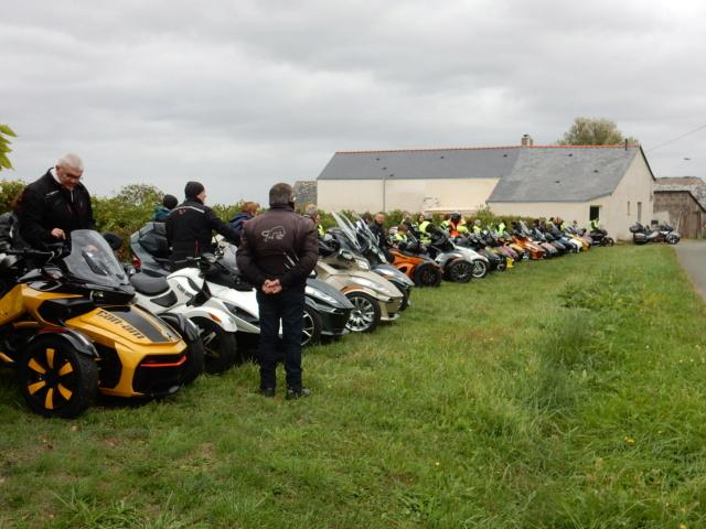 Balade dans le Layon région Anjou avec nos amis spyderistes Dscn8410