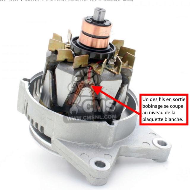 soucis alternateur recurrent Rotor-10