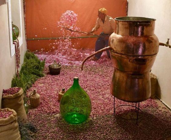 Immersion au coeur du musée du Parfum, les  à Marrakech 00110