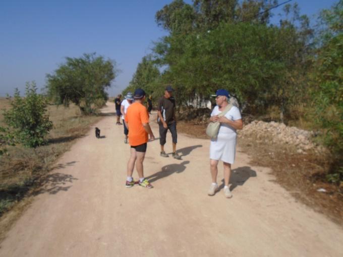 06/08 - marche sportive :  à l'ombre des cocotiers ! 110