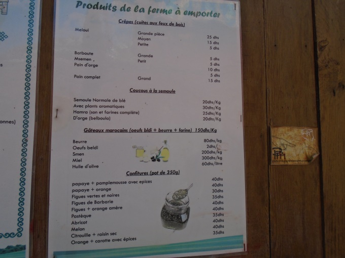 06/08 - marche sportive :  à l'ombre des cocotiers ! 1610