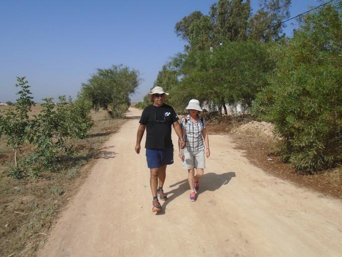 06/08 - marche sportive :  à l'ombre des cocotiers ! 310