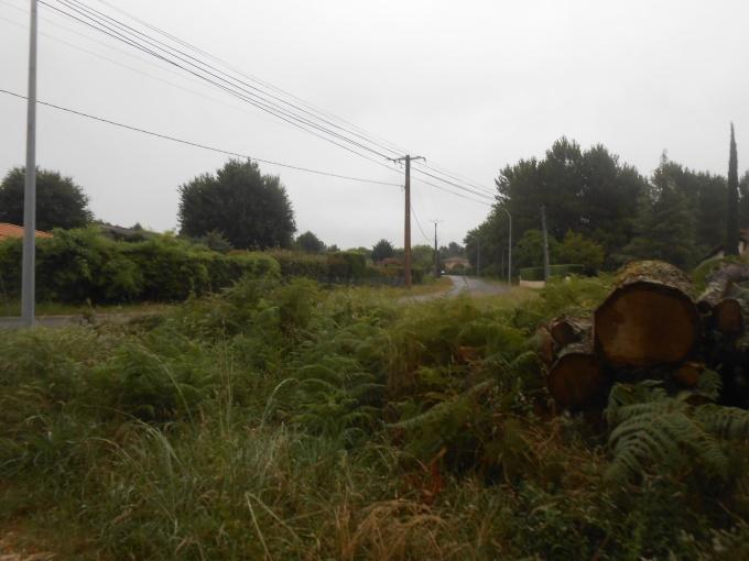 08/08 - marche sportive : au son du clairon ! Dscn2116