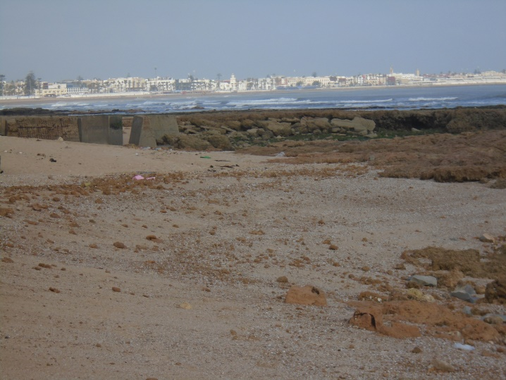 03/05 - marche sportive à Sidi-Bouzid Eqokx10