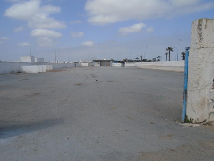 03/05 - marche sportive à Sidi-Bouzid Gdjgo10