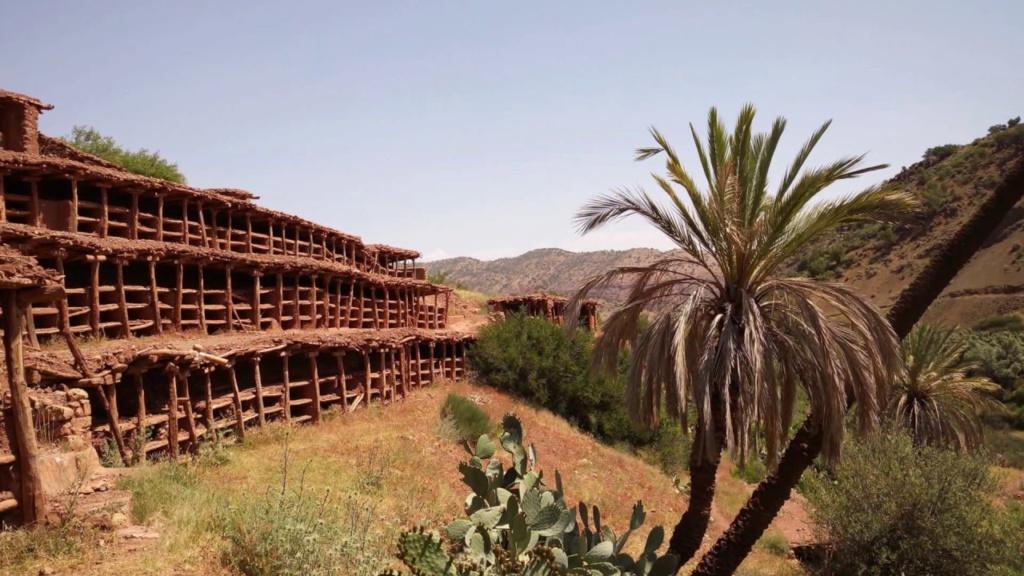 Inzerki, le rucher le plus grand du monde Inzerl10