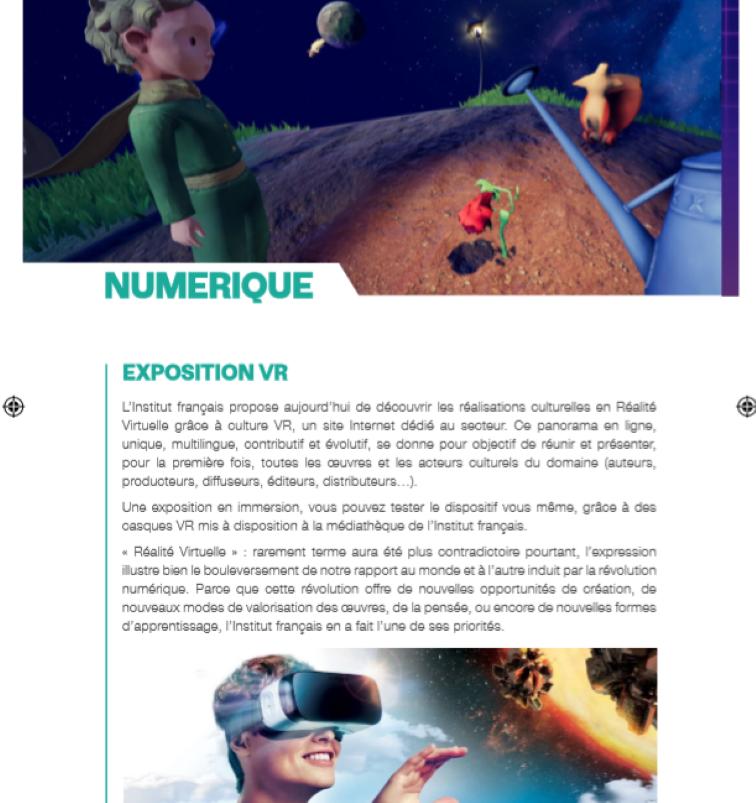 07/11 - Expositions : Novembre numérique Institut français 18 heures Numzor13